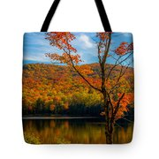 Heights Of Autumn Tote Bag