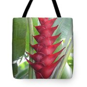 Heliconia Hot Flash Tote Bag