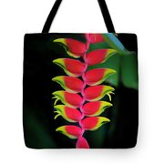 Heliconia Lobster Claw Tote Bag