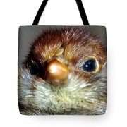 Hello Chick Tote Bag