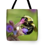 Hello In There Tote Bag