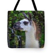 Hello Llama Tote Bag