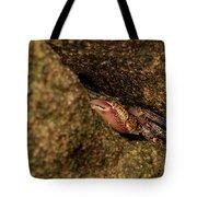 Hello, My Little Friend Tote Bag