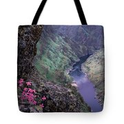 Hells Canyon Tote Bag