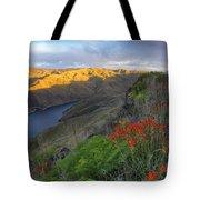 Hells Canyon View Tote Bag