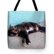 Hemingway Cat Tote Bag