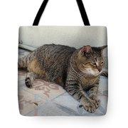 Hemingway Polydactyl Cat Tote Bag