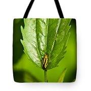 Hemiptroid Sucking Bug Tote Bag