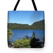Hemlock On The Shore Tote Bag