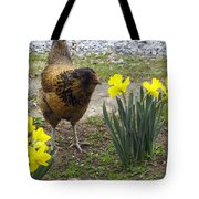 Hen And Daffodils Tote Bag