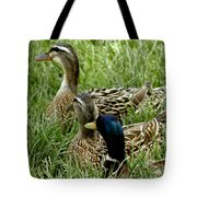 Hen Hen Drake At Frankenmuth On The Cass River Tote Bag
