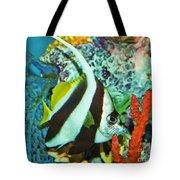 Heniochus Butterfly Tote Bag