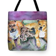 Henry And Sam And Jack Tote Bag