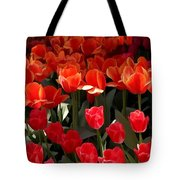 Heralds Of Spring Tote Bag