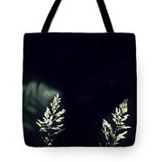 Herbs In Light With Fern Tote Bag