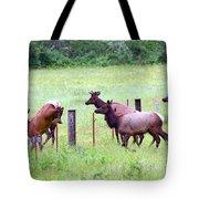 Herd Of Elk Leaping - Western Oregon Tote Bag