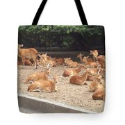 Herd Of Stags. Tote Bag
