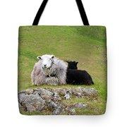 Herdwick Sheep On A Hillside In Cumbria Tote Bag