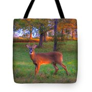 Here And Gone Tote Bag