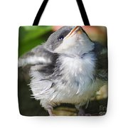 Here Comes Mommy Tote Bag by Randy Bodkins
