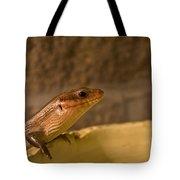 Here Tote Bag