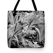 Here There Be Dragons Tote Bag