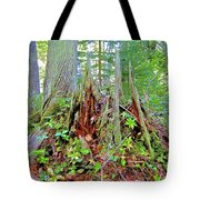 Here There Be Fairies Tote Bag