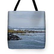 Hereford Inlet Nj Tote Bag