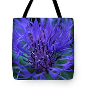 Here's Looking At Bluet Tote Bag