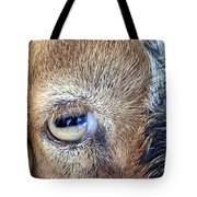 Here's Looking At You Kid - The Truth About Goats' Eyes Tote Bag