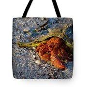 Hermit Crab- Florida Tote Bag