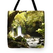 Hermon Stream Nature Reserve Banias Tote Bag