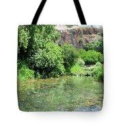 Hermon Stream Nature Reserve Tote Bag