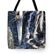 Heron Bones Tote Bag