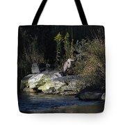 Heron By A Stream Tote Bag