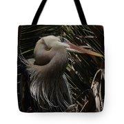 Heron Close-up Tote Bag