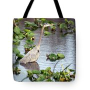 Heron Fishing In The Everglades Tote Bag