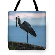 Heron In Colchester Tote Bag