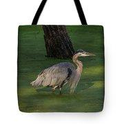 Heron In Dark Pond Tote Bag