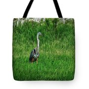 Heron In The Grasses Tote Bag