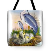 Heron Antique Bird Print Joseph Wolf The Birds Of Great Britain  Tote Bag