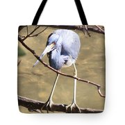 Heron On Branch Tote Bag