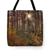 Heron Pond Cypress Trees Tote Bag