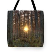 Heron Pond Sunrise Tote Bag by Steve Gadomski