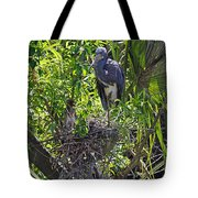 Heron With Chick In Nest Tote Bag