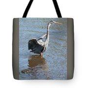 Heron With Gator Tote Bag
