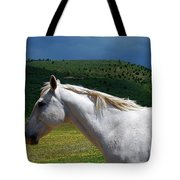 Hero's Horse-colorful Background Tote Bag