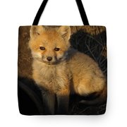 Here's Looking At You, Kit. Tote Bag