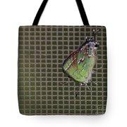 Hessel's Hairstreak Butterfly Tote Bag