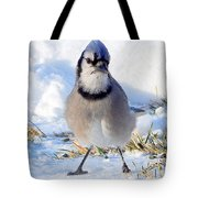 Hey Are You Talking To Me? Tote Bag